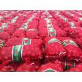 Лилейный Vegetabless свежий красный лук с завода с быстрой доставкой