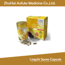 Lingzhi Spore Capsule for Sale