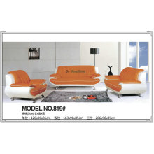 High Density Combination Leather Sofa for Living Room Furniture (819)