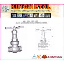 Válvula de porta de vedação de pressão classe 600 ~ 2500