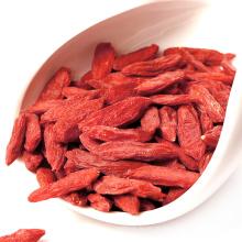 vermelho Ningxia Goji Berry sementes de nêspera chinesa