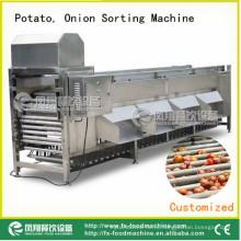 Сортировщик картофеля и лука, луковая сортировочная машина Og-606