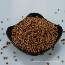 preço de trigo mourisco de trigo sarraceno cru de alta qualidade