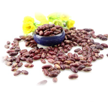New Arrival RED speckled kidney beans/kidney beans/speckled