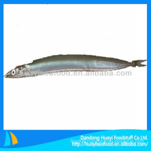Supply feed grade frozen whole sand lance