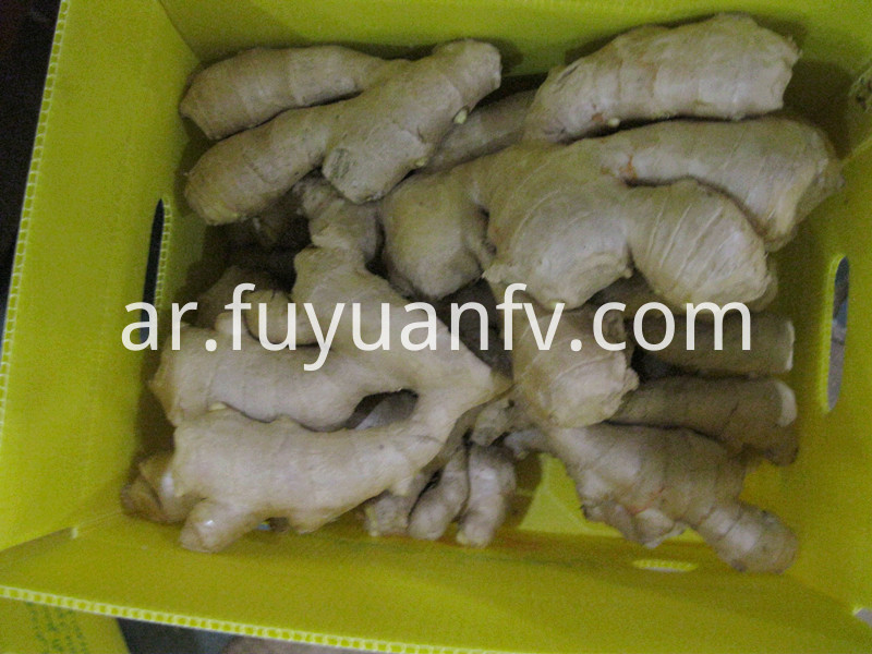 5kg air dried ginger