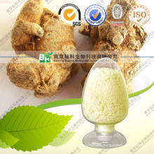 100% Pure Natural Radix Notoginseng Extract Sanchi Extract Panax Notoginseng Extract