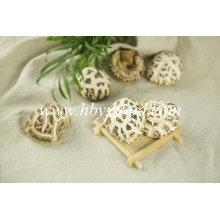 Champignons de fleurs séchées, Champignons Shiitake Yongxing