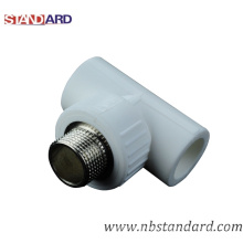 PPR Male Tee/PPR Fitting/Brass Thread Fitting/Pipe