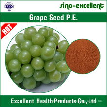 Grape Seed Extract Powder with Polyphenols 30%-90%