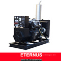 Low Price Soundproof Diesel Generator (BIS20D)