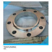JIS F304 Stainless Steel Weld Neck Flange