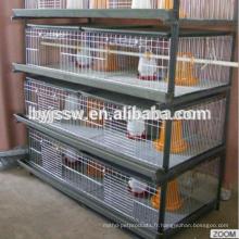 Cage de poussin de bébé de haute qualité à vendre, cages d'élevage de poussin
