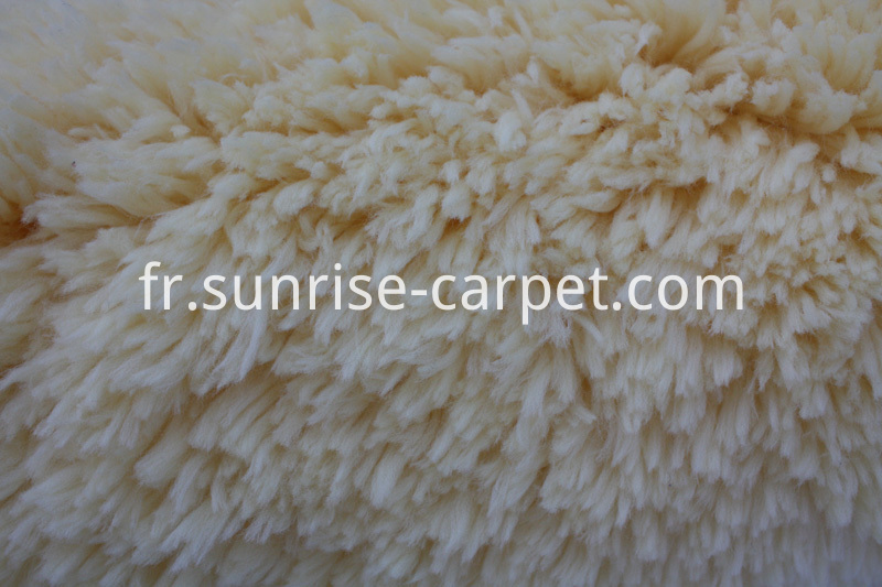 Polyester Carpet for home decoration