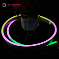 Mudança de cor Led Neon RGBW Cord Light