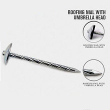 Professional Roofing Nails Umbrella Nails Manufacture From China