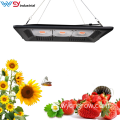 150W COB Grow Light en Home Depot