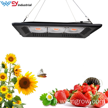 150W COB Grow Light nel deposito di casa