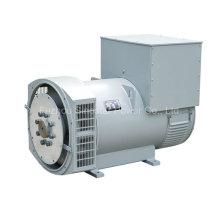 Chinesischer Stamford-Reihen-einzelner Lager-schwanzloser elektrischer Generator