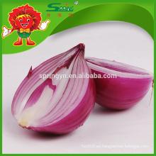 Precio al por mayor de cebolla roja fresca para cebolla deshidratada
