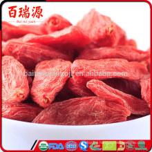 Goji lycium barbarum where to get goji berries goji extract