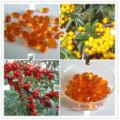 Hersteller liefern Sanddorn Berry Oil