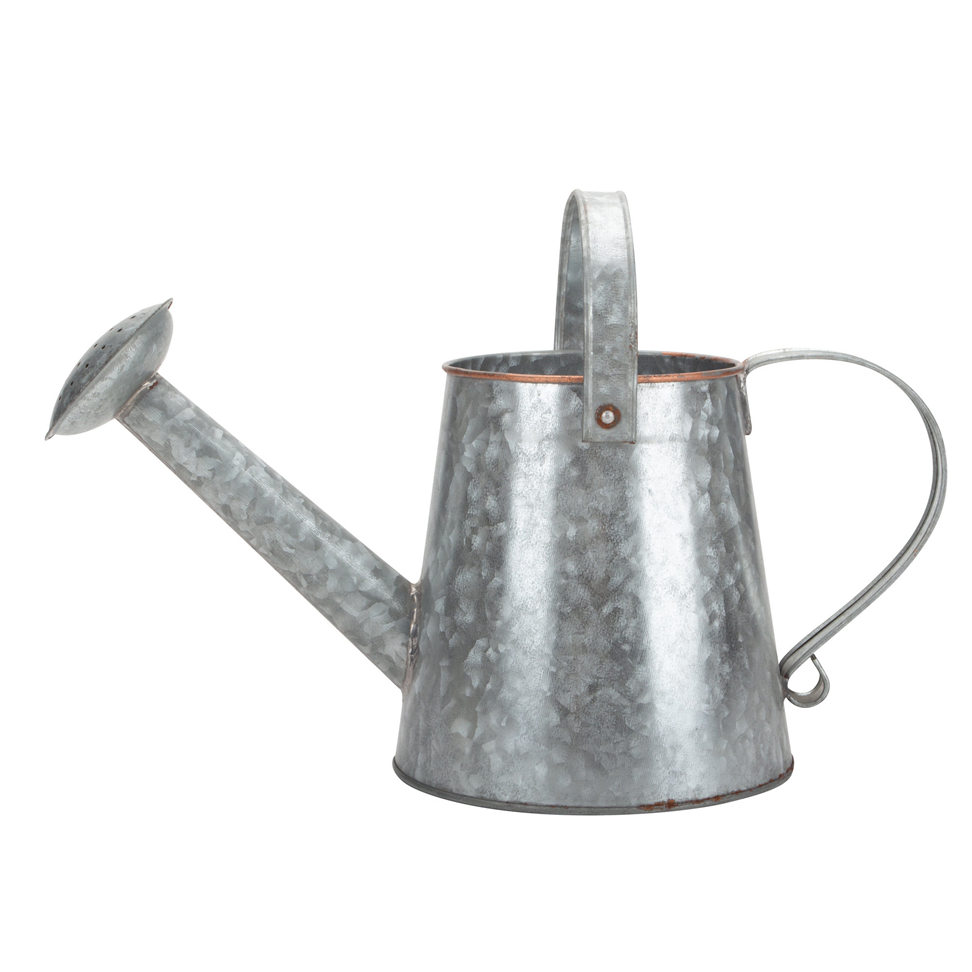 Metal Watering Can Small