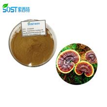 SOST Biotech Natural Organic Reishi Mushroom Extract Capsules