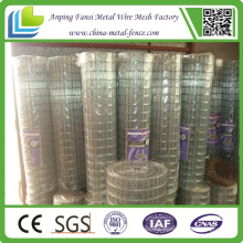 Top Quality Standard 30m Length Roll Galvanized Welded Wire Mesh