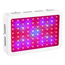 80X10W LED Chip 800W LED Luces de crecimiento