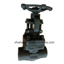 Válvula de porta forjada API602 da extremidade NPT da linha do aço A105