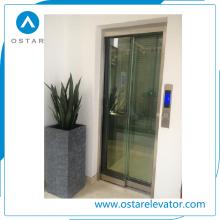 Высший сорт подгонять виллы использованы Домашний Лифт с украшением красивый