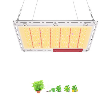 Placa de luz LED Grow DIY Quantum Samsung lm301b