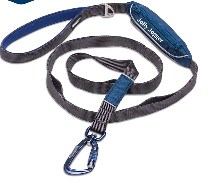 Pet Training Leash