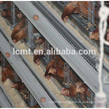 Chicken Use Automatic Poultry Farm Equipment