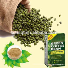 Free sample 30 grams for Antiaging Green Coffee P.E. Chlorogenic Acid POWDER