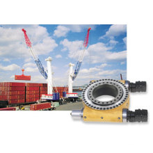 Dual Worm Slew Drives for Crane Undercarriage L9 Inch