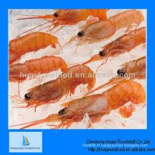 Crevettes rouges