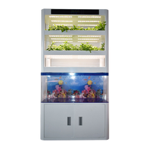 Skyplant Vertical Garden Garden Smart Home Grow System Vegetable Growing Machine