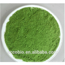 Polvo de jugo de hierba de trigo, polvo de hierba de trigo orgánico, polvo de hierba de trigo