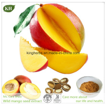 Weight Controlling Product Mango Seed Extract/ Losing Weight Agent