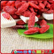 Good quality Goji berry as union subotica goji berry at walmart goji berry amazon Without any additives