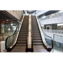 XIWEI Factory Outlet Prix à bas prix L'escalator VVVF offre une installation d'escalator et une installation d'escalier Enregistrement Achat Escalator