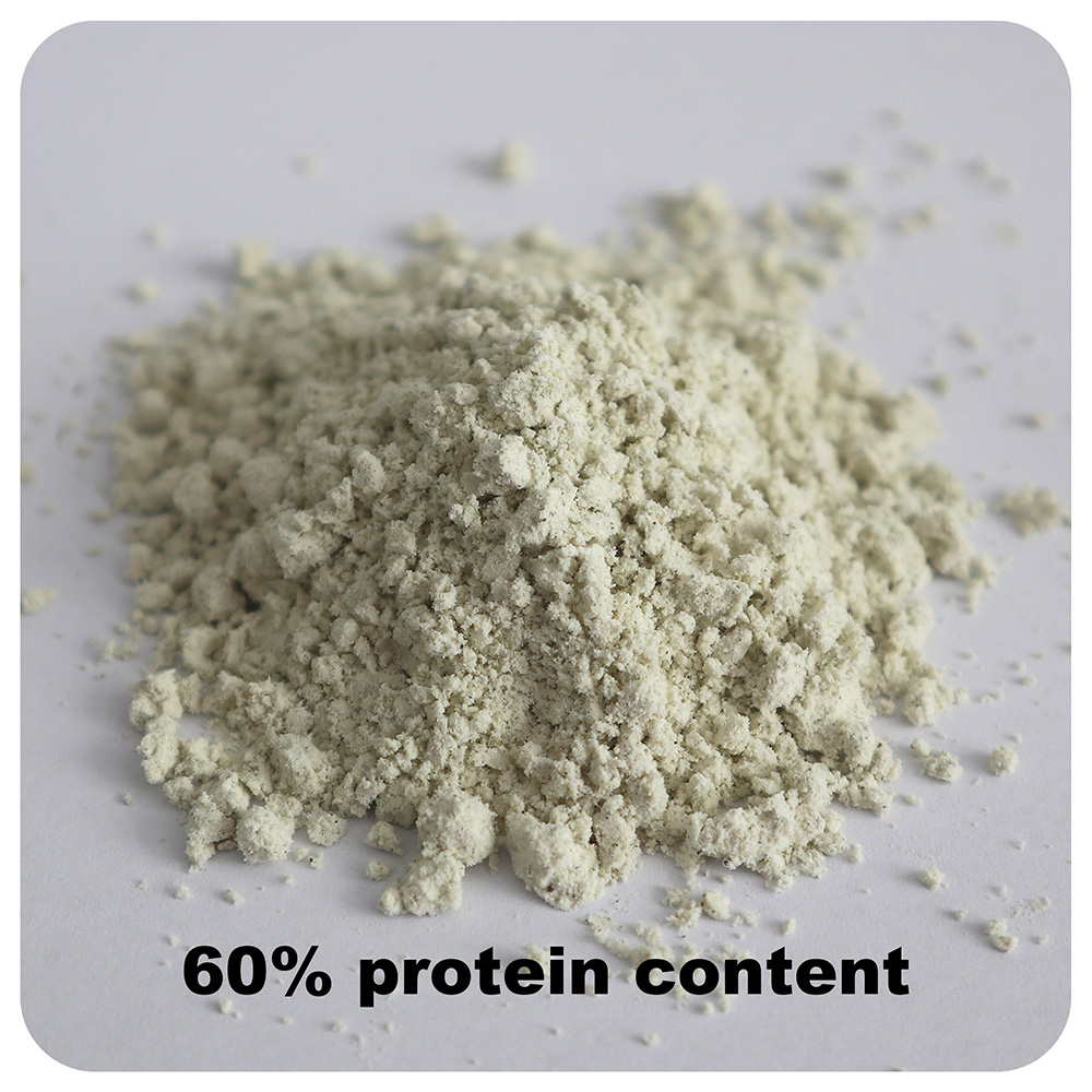 Hemp Seed Protein Powder Benefits