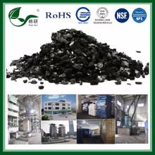 Nouvelle base de charbon actif au charbon pour le traitement de l'eau