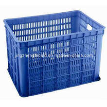 Китай пластиковые бытовые ящик плесень