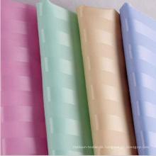 1cm Streifen Duschvorhang für Hotel Badezimmer (DPH9201)