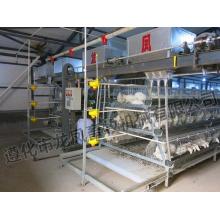 Hot-DIP Galvanisierter Schichtkabel Zertifikat von ISO9001