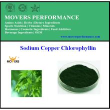 Высочайшее качество природы Горячие продажи натрия медь Хлорофиллин