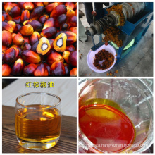 China Made New Condition Palm Kernel Oil Extraction Machine for Sale